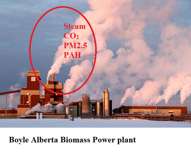image005-boyle-biomass-plant-norm
